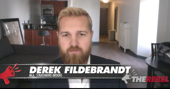 fildebrandt-rebel-pcninnies_thumb-1.png