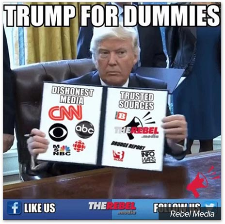 rebel-trump-for-dummies.jpg